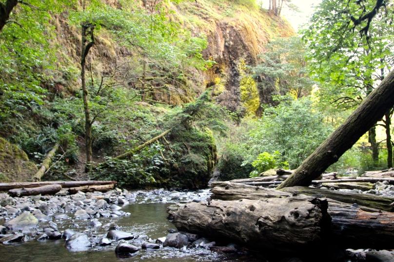 Oneonta Gorge (C) Aashish Vaidya